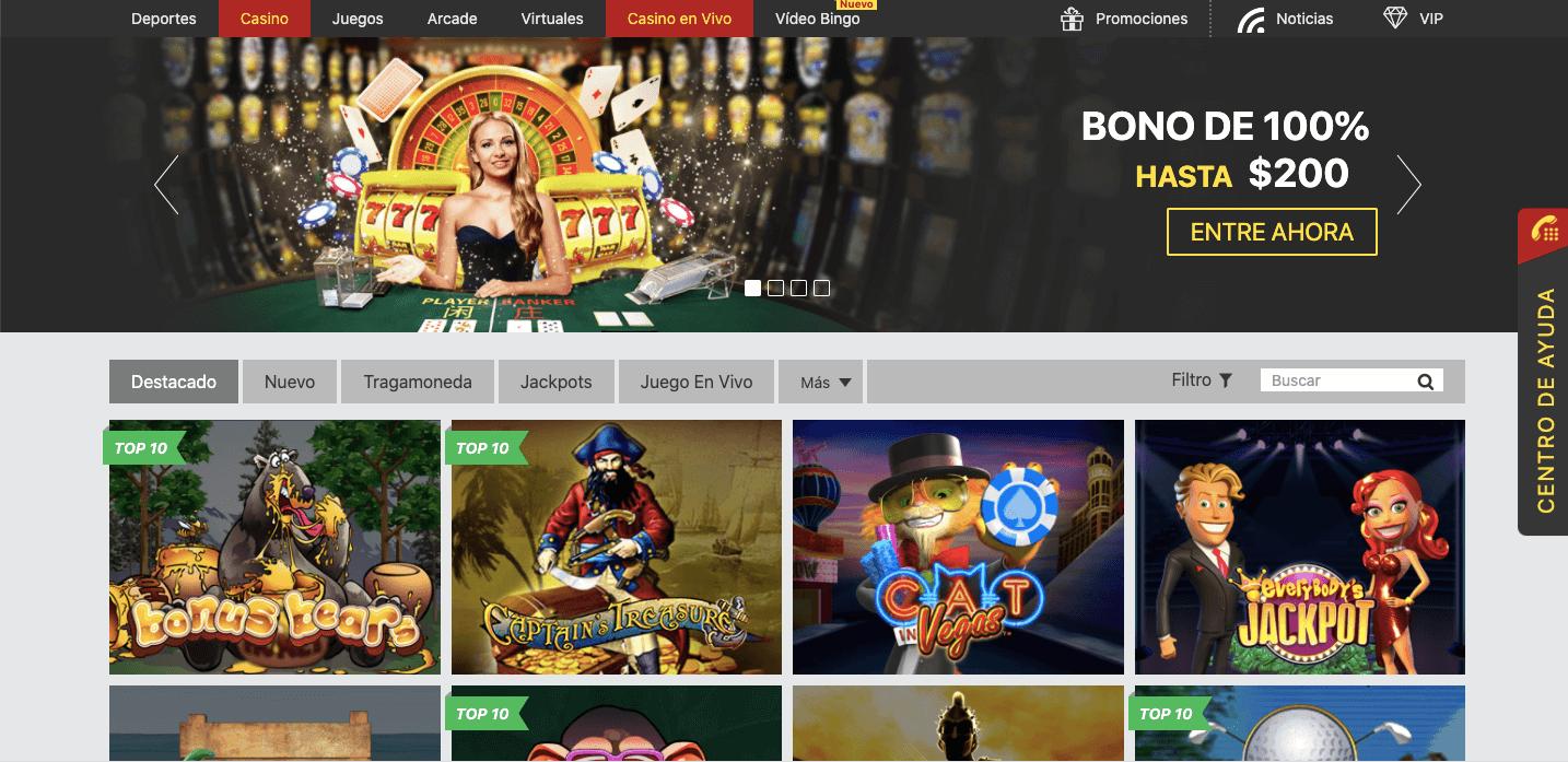 Dafabet Casino en vivo
